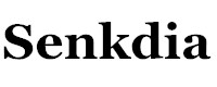 Senkdia Online Fashion Bags Store
