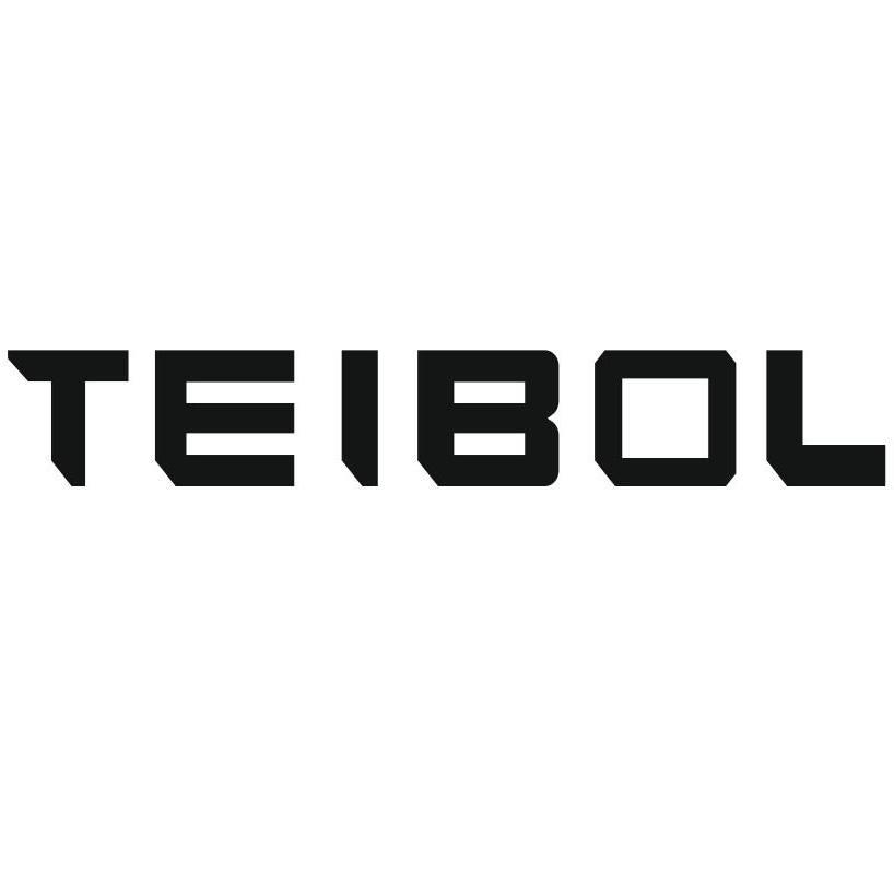 TEIBOL  WATCH